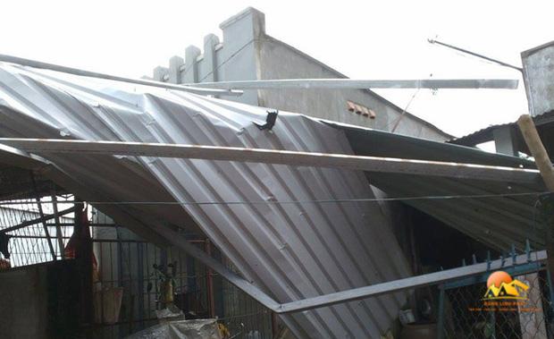 Thời điểm sửa chữa mái tôn thích hợp
